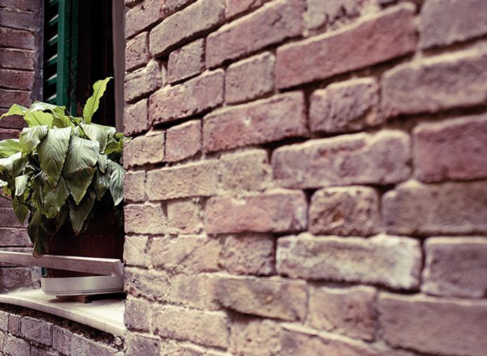 Bautenschutz, Fassadenrenovierung, Wärmedämmung, Schimmelsanierung, Trockenbau, Walter Schnee Anstrich und Bautenschutz in 70599 Stuttgart-Plieningen