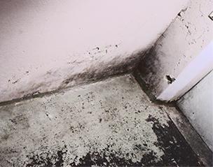 Kellersanierung und Feuchtigkeitsabdichtung